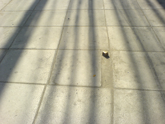 The Hidden Bronze Nub Of Toe Stubbing